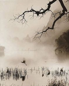 Don Hong-Oai - Inspiration von Meistern der Fotografie - Japanese Painting, Chinese Painting, Chinese Art, Japanese Art, Chinese Prints, Watercolor Landscape, Landscape Art, Landscape Paintings, Watercolor Paintings