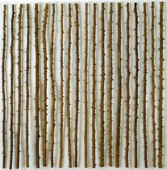 herman de vries (by Woolgathersome) Paper Background, Background Patterns, Growth And Decay, Balance Art, Sticks And Stones, Environmental Art, Texture Design, Abstract Photography, Landscape Art