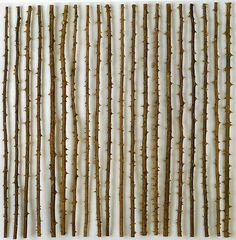 aunaturalflowers: herman de vries (by Woolgathersome) Omdat De Vries de natuur als onze primaire realiteit beschouwt, toont hij deze vaak als document - ontdaan van andere betekenissen - om de ervaringen te bieden die het mogelijk maken de poëzie van de werkelijkheid te ontdekken.