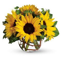 Flowers in Season for April: Sunflowers