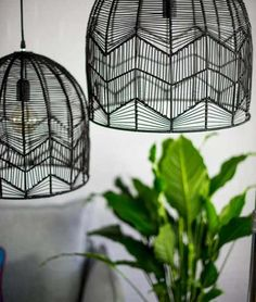 Milly and eugene black lace rattan light - large