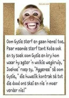 Afrikaanse Quotes, Twisted Humor, Text Messages, Funny Cute, Laugh Out Loud, Positive Quotes, Affirmations, Funny Jokes, Laughter