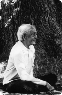A selection of the best Jiddu Krishnamurti Philosophy Quotes. Discover these thought provoking famous and rare quotes of the great Indian philosopher Yoga Thoughts, Jiddu Krishnamurti, Great Thinkers, Philosophy Quotes, Taoism, Free Thinker, Iyengar Yoga, Rare Photos, Thought Provoking