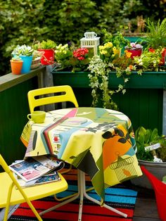 COLOR IN THE GARDEN:  we can't do a lot of flowers b/c the deer are coming right up and vandelizing the whole place.  THIS is a great idea to bring in color. Colored pots and containers...bright table cloths...rugs.  (now to find plants deer won't eat)
