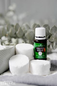 Click over to get the easy recipe for these soothing shower steamer disks infused with essential oils! Turn your shower into a wellness spa and breathe easier with this fizzy combo of essential oils and natural steamy goodness. #essentialoils #winter #naturalwellness Diy Makeup Remover, Natural Makeup Remover, Young Living Eucalyptus, Eucalyptus Essential Oil, Eucalyptus Oil, Shower Steamers, Diy Shower, Best Essential Oils, Lotion Bars