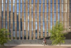 Gallery of Beus Center for Law and Society / ennead Architects - 16