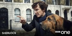 Sherlock and his newest friend