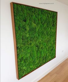Preserved Bun Moss Wall, supplied in a natural wooden frame