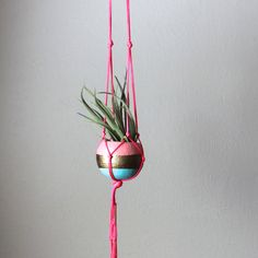 Neon Pink Macrame Air Plant Hanger with Tillandsia - Aqua, Gold, Pastel Pink and Neon Pink on Etsy, $30.00