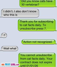 Who does this to a random person?  haha this isn't auto correct but it is funny texting fails