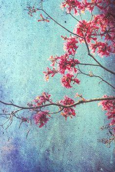 Hope for Spring - Art Print by Angela King-Jones