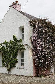 Flower and vine covered cottage in Scotland | Nicole Franzen