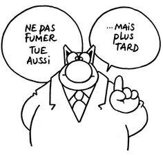 Le Chat de Geluck Image Fun, Robert Downey Jr, Comic Strips, Minions, Street Art, Funny Quotes, Geek Stuff, Jokes, Phrases
