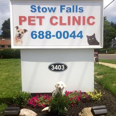 Stow Falls Pet Clinic located at 3403 Kent Rd, Stow, Ohio 44224 Stow Ohio, Pet Clinic, Exotic Pets, Your Pet, Health Care, Fall, Animals, Autumn, Animales