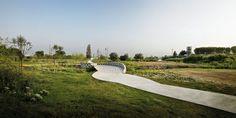 Recuperación medioambiental del río Llobregat