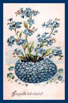 Myosotis Egg by mpt.1607, via Flickr