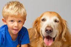 Resultado de imagem para imagens de cachorros com criança
