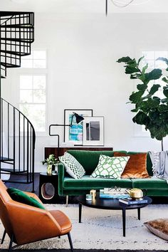 How to rescue your fiddle leaf fig   Home Beautiful Magazine Australia #interiordesignmagazine