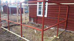 Nu har vi kommit ett steg längre med hönsgården. Vi har målat den röd med riktig rödfärg för att matcha gårdens ladugård. Känner mig väldigt nöjd med resultatet hittills. Däremot gick det…