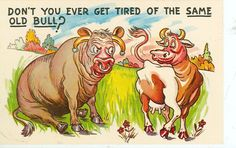 COMIC-DON'T YOU EVER GET TIRED OF THE SAME OLD BULL?-(CF-741)#163-COW/BULL Funny Cows, Vintage Postcards, Tired, Comics, Vintage Travel Postcards, Im Tired, Cartoons, Comic, Comics And Cartoons