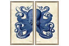 "Burnished Silver Framed Octopus Diptych, Vintage Print Gallery, 18"" x 32"" each panel.  Yes, please!"