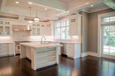 Coffered Kitchen Ceiling - Transitional - kitchen - Muralo Pain Majestic Sky - Michelle Winick Design