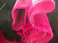 pink credit : isabelle jobard