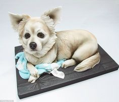 Among the cakes she has made for her series of realistic dog cakes is an adorable white Chihuahua