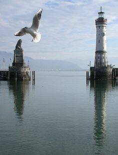 Lindau am Bodensee / Lake of Konstanz #Lake #Landscape #nature
