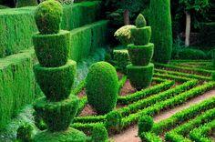 Topiárias no Jardim Botânico da Madeira