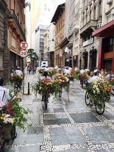 azuma makoto flower messenger flower bicycles sao paulo performance art
