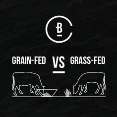 Here's what you need to know about grain vs. Positive And Negative, Need To Know, Grass, Advice, Positivity, Grasses, Herb, Optimism
