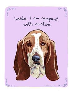 Bassets.... the happiest sad-faced dogs you'll ever meet.  :)