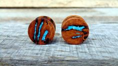 16mm Australian Eucalyptus Resin Burl Wood ear plugs, Turquoise and Abalone inlay, Crazy beautiful and hand crafted 5/8ths inch gauge by MustLoveWoodPlugs on Etsy