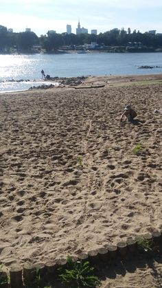 Widok na PKiN z Plaży Saskiej.