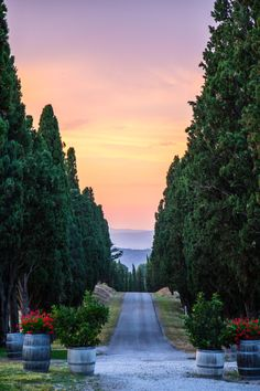 End of the road in Manciano #Italy #Tuscany #sundown (Possibly near Quercia Rossa Farmhouse?)