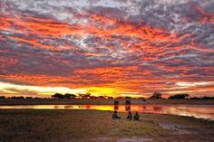 Somalisa Camp, Hwange, #Zimbabwe. Elephants in the river at #sunset African Bushcamps