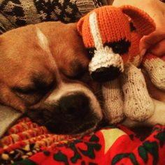Double trouble! Pippi with mini Pippi! Happy @athomewithjanine #puppy #minime #commission #knit #wool #knittedtoys
