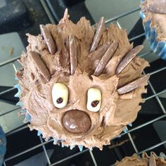 Hedgehog cakes!