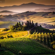 The Tuscan Morning   - Explore the World with Travel Nerd Nici, one Country at a Time. http://TravelNerdNici.com