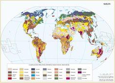 Imagen incluida en el subtema España en el contexto geográfico mundial: medio natural Natural, Maps, Illustrations, Nature, Au Natural