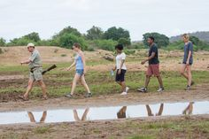 Bushwalk through the Greater Kruger National Park. The guides will ensure your safety! Kruger National Park, National Parks, Special Interest Groups, Tourism Marketing, Private Games, Game Reserve, Best Places To Travel, Tent Camping, South Africa