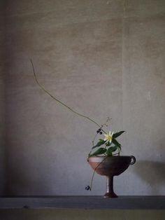Florist | Mitate