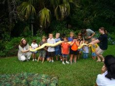 Summer Presenters: Zoo Mom Science. Lizards, snakes and bugs, oh my! Are they really as scary as they seem? Learning comes alive with animals from Zoo Mom Science. Ages 6-12. Seating is limited for some events. Please call 407.835.7323 for information. http://calendar.ocls.info/evanced/lib/eventcalendar.asp?ag=&et=Children%27s+Programs%2C+Teen+Programs&kw=zoo+mom&dt=dr&ds=2014-6-1&de=2014-8-22&df=list&cn=0&private=0&ln=ALL