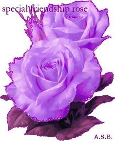 special friendship rose