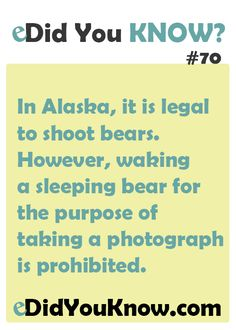 In Alaska, it is legal to shoot bears. However, waking a sleeping bear for the purpose of taking a photograph is prohibited. ► Click here for more: eDidYouKnow.com