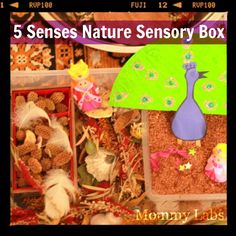 Sensory play, especially with elements from nature invites children to engage unrestrained. www.mommy-labs.com