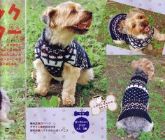 Dog Clothes Knits Archives ~ Knitting Free