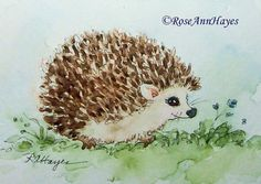 Baby Hedgehog Print of Watercolor Painting ACEO by RoseAnnHayes Watercolor Animals, Watercolor Print, Watercolor Illustration, Watercolor Paintings, Watercolours, Baby Hedgehog, Baby Food Jars, Stuffed Animal Patterns, Animal Paintings