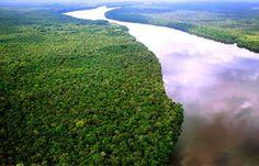 Águas de Pontal: Amazônia se transforma em savana mais lentamente d...